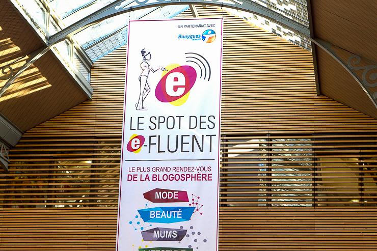 efluent5-asi-fue-la-gran-cita-de-la-blogosfera-en-paris-28